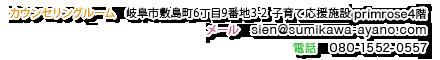 澄川綾乃のカンタン家庭療育のアクセス