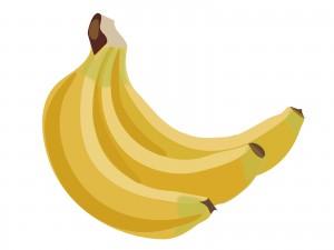 発達障害・自閉症育児のカンタン家庭療育 バナナちょうだい