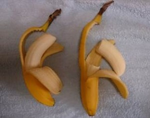 自閉症(発達障害)の息子のバナナの形へのこだわり|澄川綾乃のカンタン家庭療育