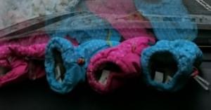 発達障害・自閉症のカンタン家庭療育 手袋