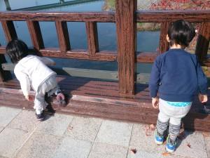 発達障害・自閉症のカンタン家庭療育