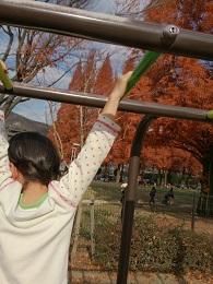 発達障害・自閉症のカンタン家庭療育 アスレチック遊具で成長