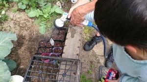 カンタン家庭療育 家庭菜園で豆まき 水やり
