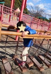 長良公園(岐阜市)の低いアスレチック遊具