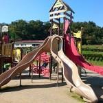 自閉症の子が高いところに登る理由と対処方法