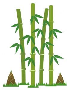 カンタン家庭療育 竹林を見に