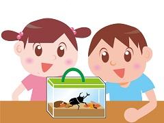 4歳児の発達の特徴 虫などの自然環境に興味が湧く